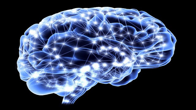 Fibre neuronali