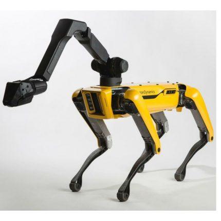 Cane robot Spot: aiuto